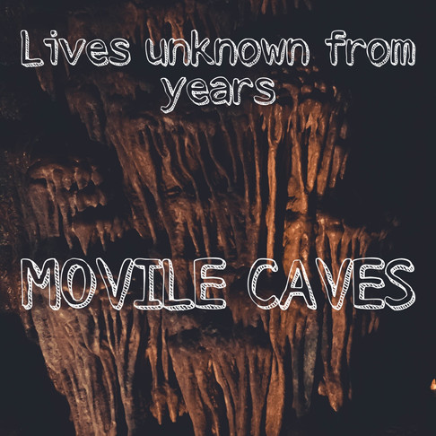 Steps towards surviving without oxygen: The Movile caves