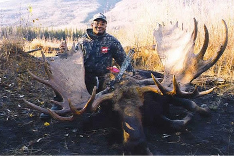 Shiras Moose