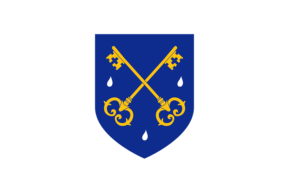 shield-with-backing