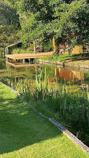 IMG_7803 garden.jpg