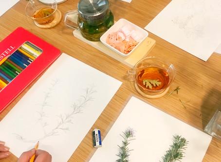 大人のための植物画レッスン レッスン風景