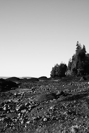 Hopewell Rocks - B & W 1