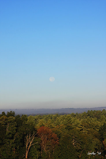 Moonset Over Fog