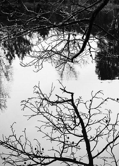 Close Reflection