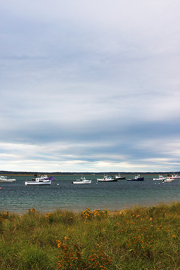 Boats in the Harbor - Seabrook, NH 2