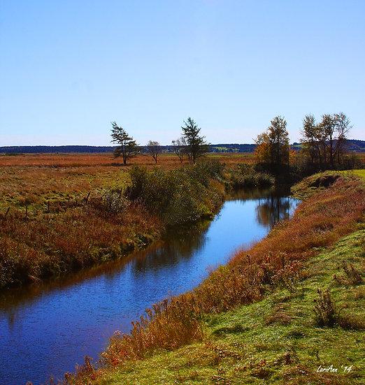 Driving Scenes - Sawmill Creek