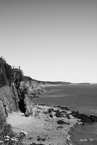 Cape Enrage Coastline