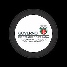 GOVERNO DO ESTADO.png