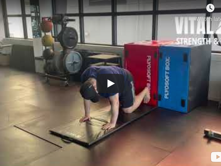 Exercise of the Week: Quadruped Plank Marches