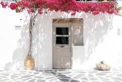 house door flowers aegean cyclades greec