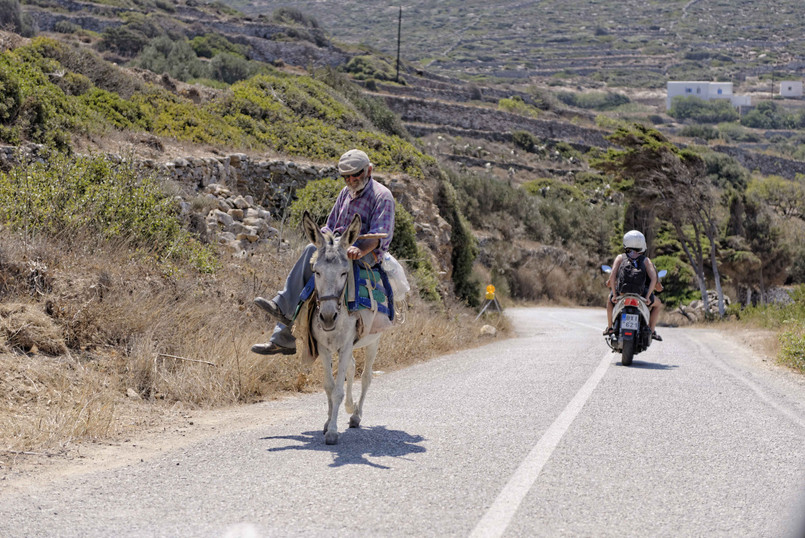 LOCAL PERSON DONKEY MOTOR CYCLE ROAD TRI