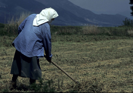 LOCAL PERSON GREECE WOMAN FARMER TRADITI