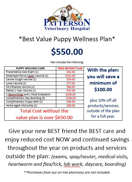 Puppy Plan website.PNG