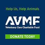 Charitable Fund.jpg
