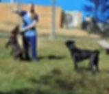 katie_puppies2.JPG