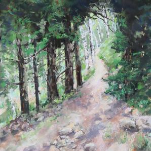 To the Aspen Grove 2