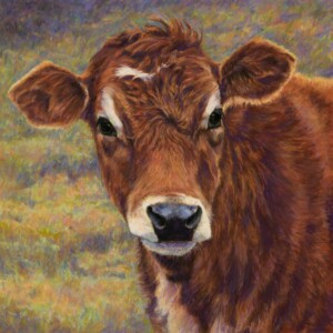 """Jersey Cow """"Betsy"""""""