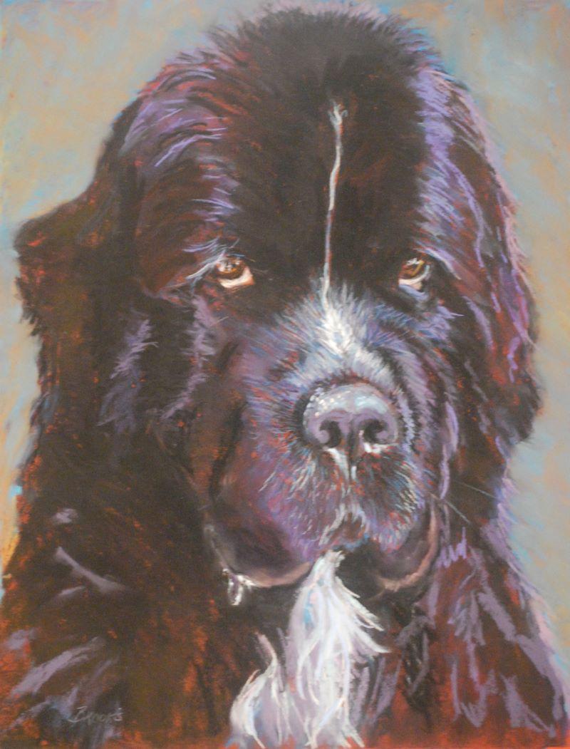 Winslow by Terri Brooks