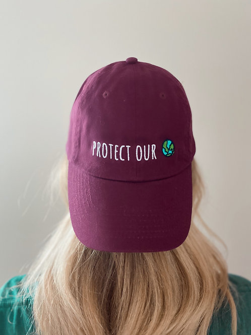 Protect our Home Hat