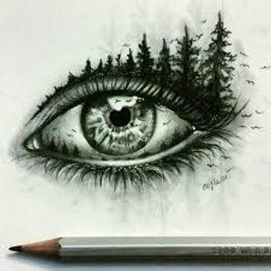 Iris oeil 1.jpg