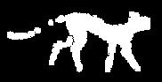 Julian Brookstein logo symbol-white with