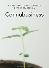 Cover of a cannabis ebook