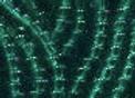 Size 11 Czech #153 Transparent Emerald