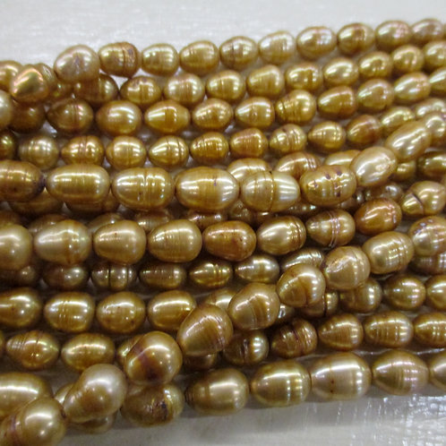 FWP11 Gold 9 x 8mm Oval