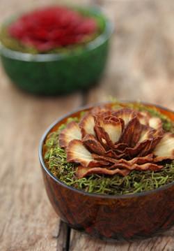 bowl natureza B.jpg