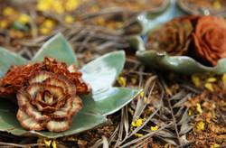 flor _ folha ceramica natureza.jpg