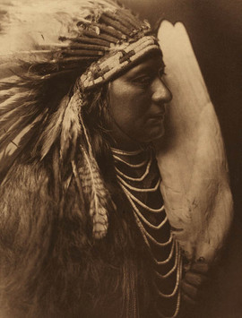 Nez Perce Brave, 1905