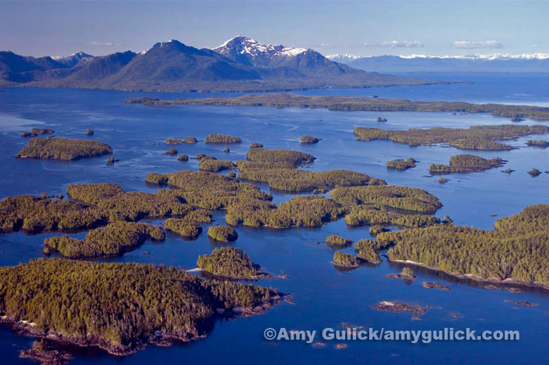 Some of the many islands of the Tongass Rain Forest. Photo courtesy of Amy Gulick.