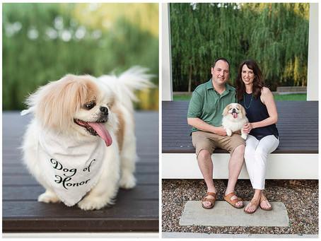 Rachel & Blake- Fort Worth Engagements