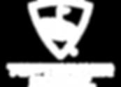 Texture_Toptracer_Logo_Colour.png