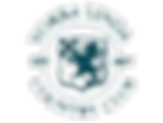 ylcc logo.png
