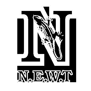NEWT sports kit design.png