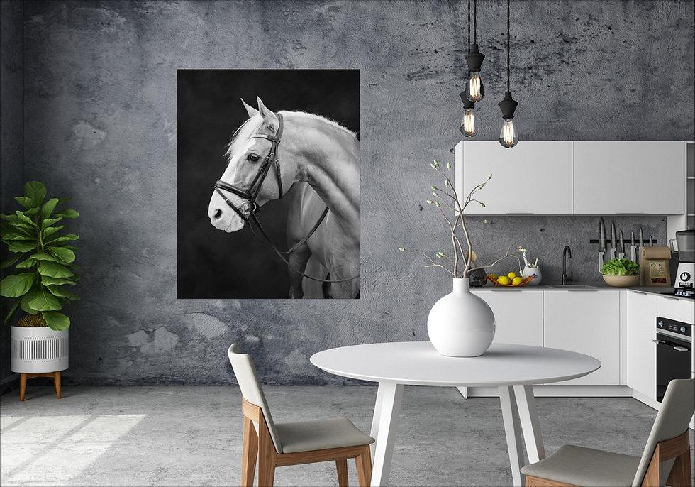 black background equine wall art