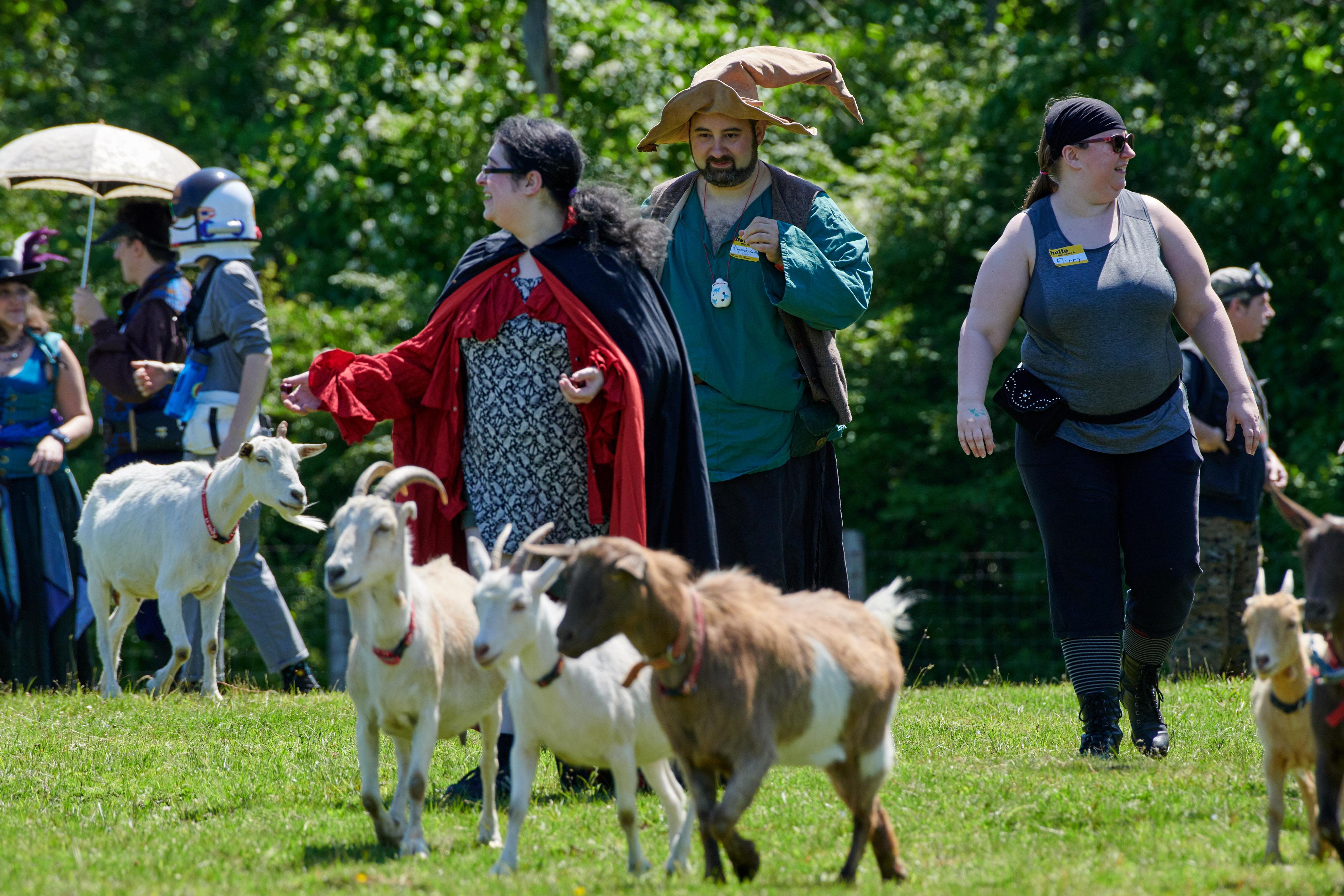 Goat Larp_2019 127