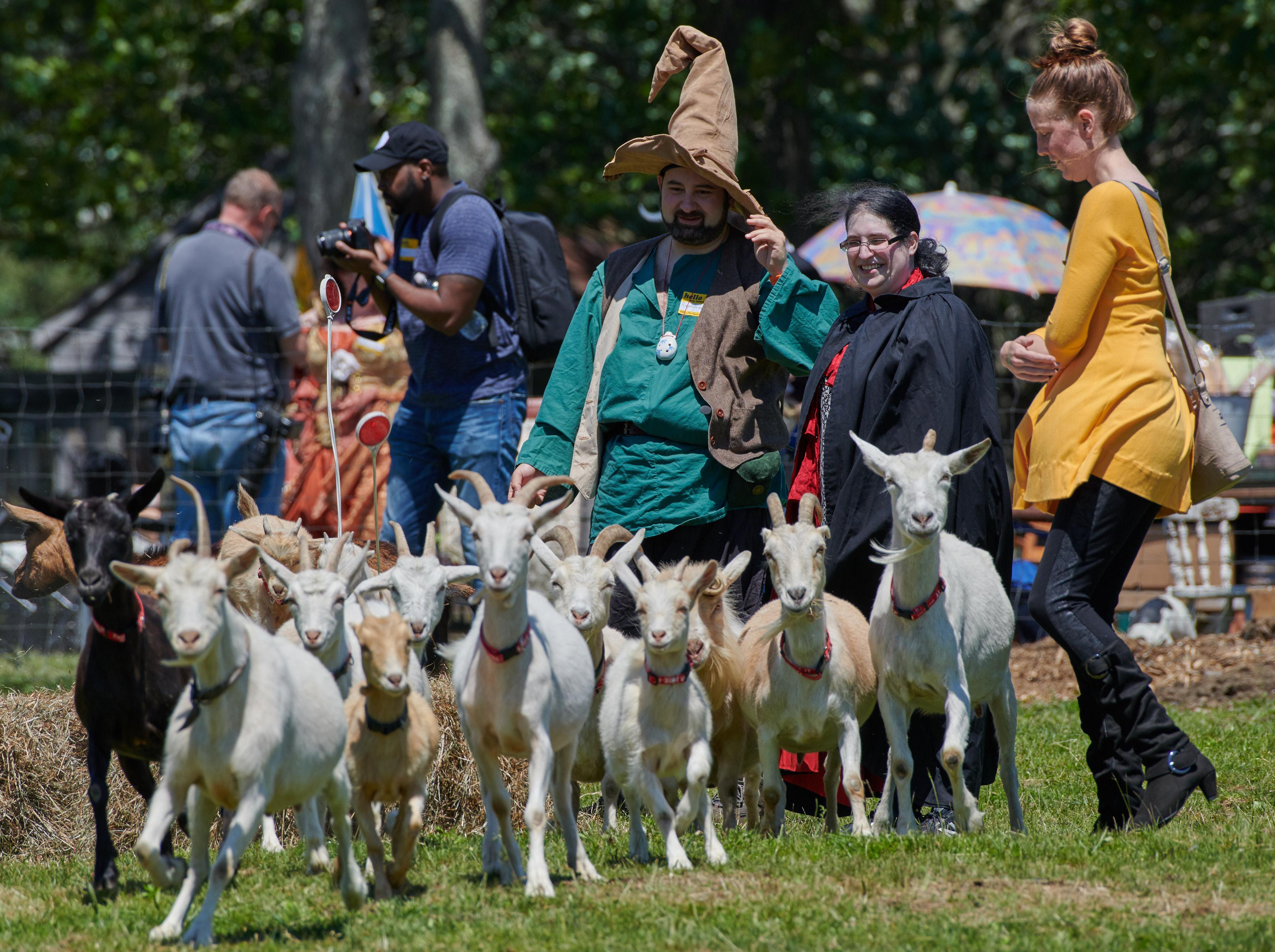 Goat Larp_2019 075