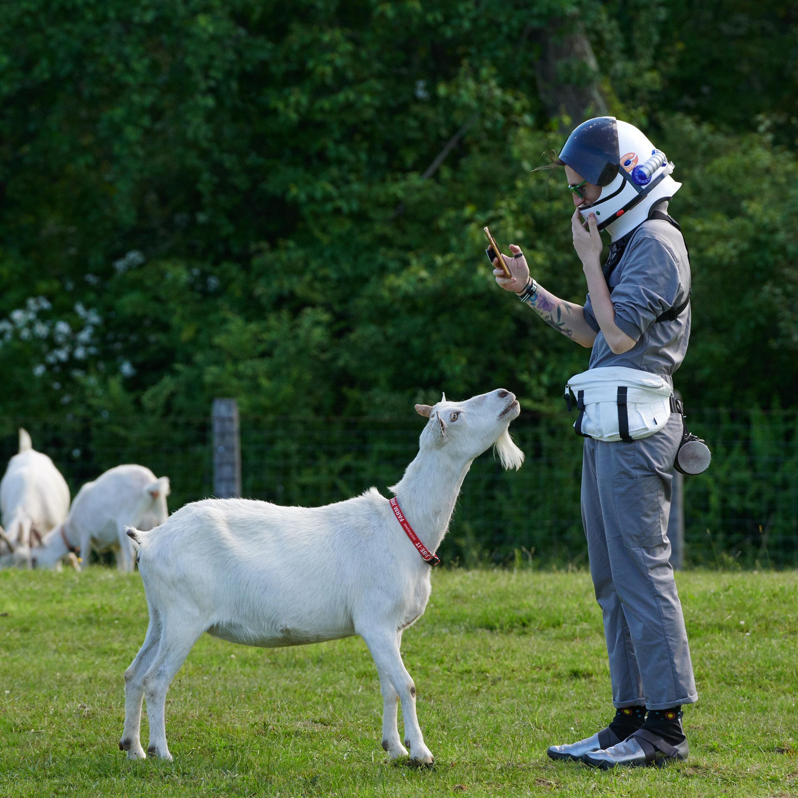 Goat Larp_2019 145