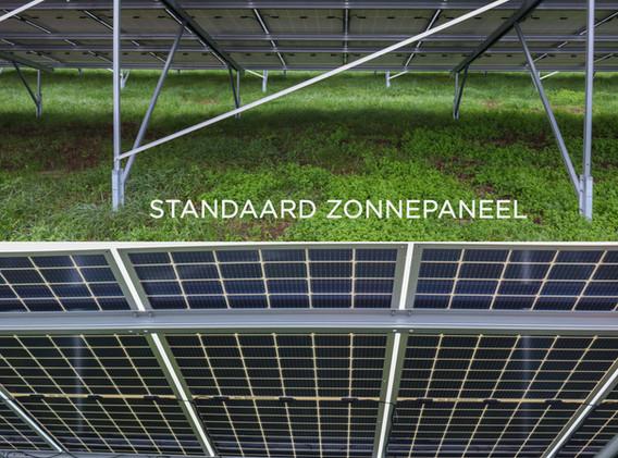 Standaard vs Bifacial zonnepanelen
