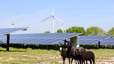 SDE+ subsidie voor drie nieuwe zonneparken