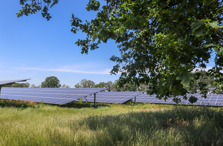 Zonnepark Hoogveld-Zuid