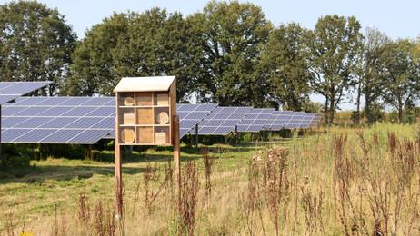 Subsidie toegekend voor eco-certificering