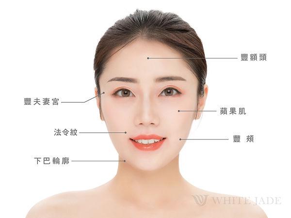 舒顏萃適應症-臉部圖-01.jpg