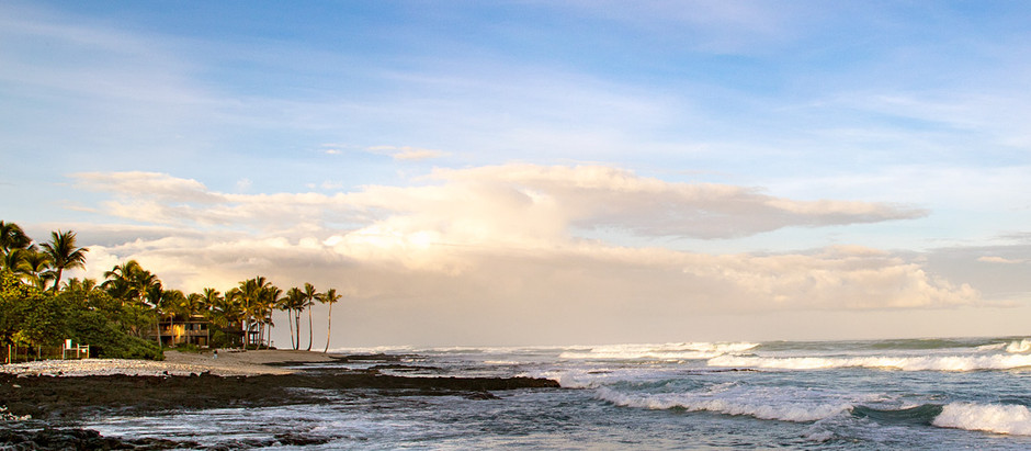 ハワイ島が一番に選ばれました!
