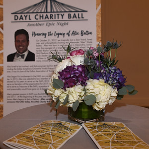 2018 DAYL Charity Ball