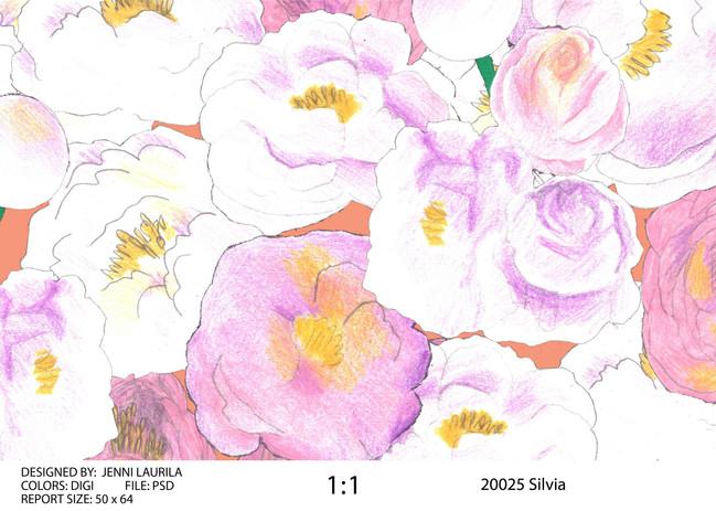 silvia_35x25_presentation-01.jpg
