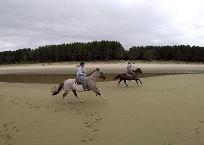 Beach Gallop in Colonia del Sacramento Uruguay