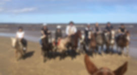 Gaucho horseriding near Buenos Aires with criollo horses through countryside and on the beach